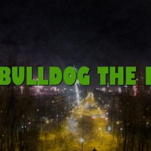 The Bulldog The First
