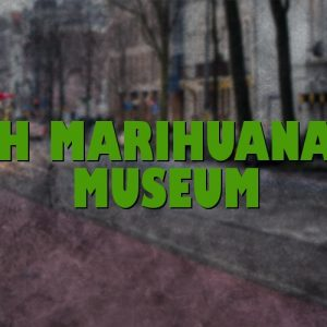 The Hash Marihuana & Hemp Museum