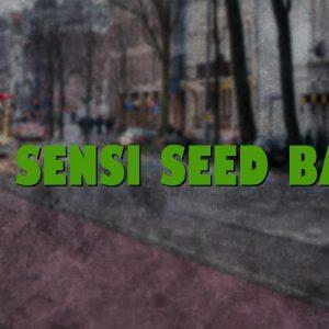 The Sensi Seed Bank