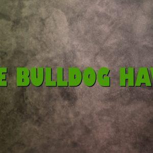 The Bulldog Havri